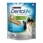 Dental (16)