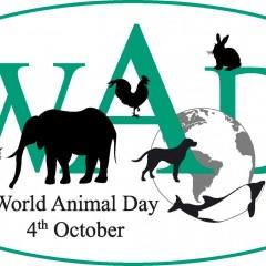 Διεθνής Διακύρηξη Δικαιωμάτων των Ζώων