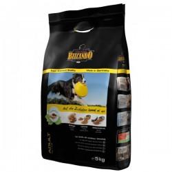Ολιστικές Τροφές για Σκύλους